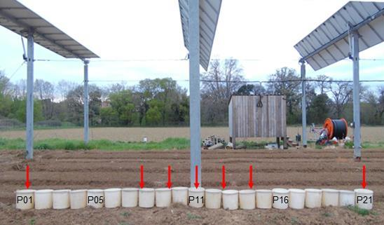 Hess Rain Concentration And Sheltering Effect Of Solar Panels On Cultivated Plots