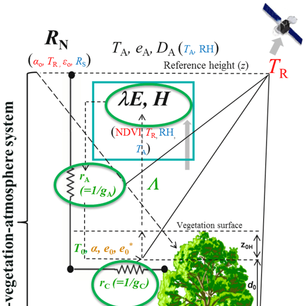 BG - Relations - Energy partitioning and surface resistance