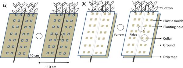 BG - Relations - Modelling the sensitivity of soil mercury